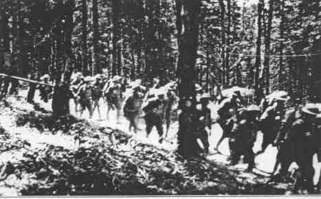 Members of the 35th Division, marching through the Vosges Forest, France, 1919. They were predominantly comprised by men from Missouri and Kansas, to whom Coolidge offered recognition in dedicating the Liberty Memorial, 1926.