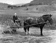 Former President at his Vermont family farm. He and his horse are ready to put the hay baler to work, July 1931.