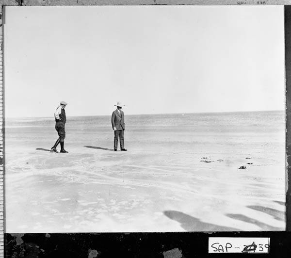 Coolidge and Mr. Coffin happen upon some sea turtles on the beach, Sapelo Island.