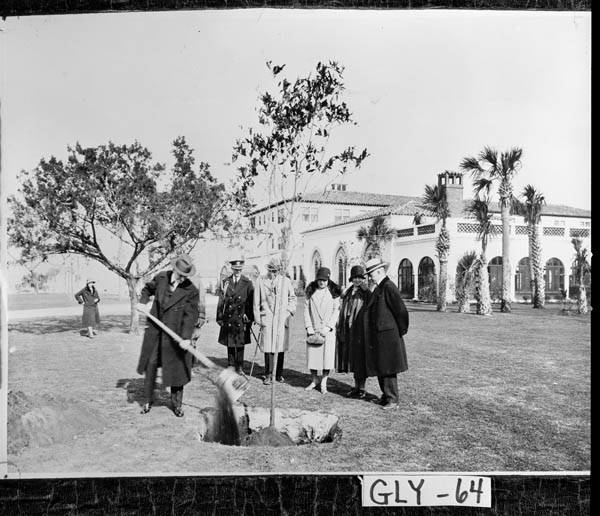 "At Sea Island, December 1928, Coolidge planted ""The Constitution Oak"" on the grounds of The Cloister, the hotel established by the Coffins (pictured here beside the Coolidges)."
