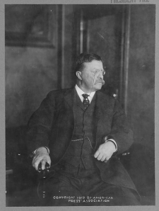 Teddy Roosevelt, the year he came back from retirement to run against his old friend, Taft, which split the G.O.P. and gave the victory to Woodrow Wilson, 1912