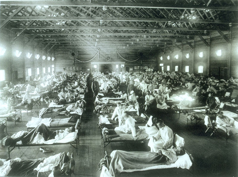 Influenza took the lives of 6 million people in 1918. Those who survived remembered how devastating the loss was, especially just as the War came to a halt.