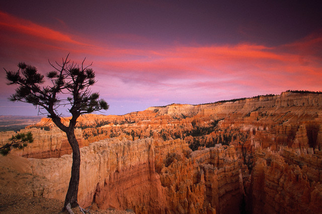 19. Bryce Canyon National Park, Utah, established February 25, 1928. Courtesy of Atlantide Phototravel/Corbis.