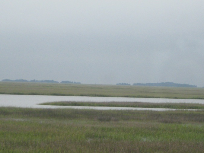 Peering into the distance for Sapelo Island, where Coolidge stayed with the Coffins at what is now known as the Reynolds Mansion.