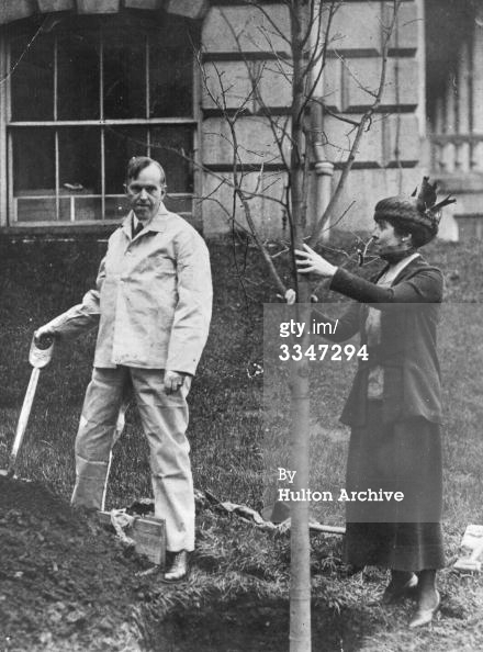 Governor and Mrs. Coolidge transplanting a tree in front of the State House in Boston, April 6, 1920. Courtesy of Gettys Images.