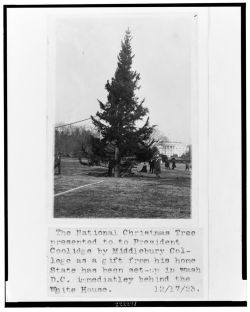First Christmas Tree 1923