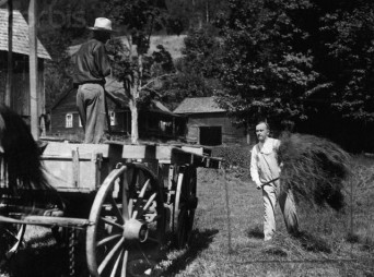 "Original caption: President Calvin Coolidge on the Blanchard Farm at Pinney Hollow as he threw a fork full of hay on the wagon. He seems to be enjoying his ""back to the farm"" stint. --- Image by © Bettmann/CORBIS"