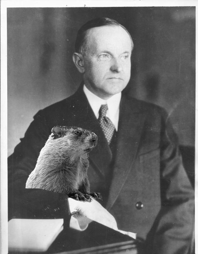 CC portrait-groundhog