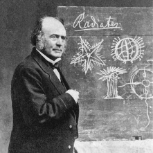 Louis Agassiz, Swiss-born geologist, noted for his work on glaciers, along with more controversial contributions to scientific thought.. Agassiz chose Massachusetts to do much of his work.